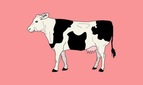 ダイエット中に肉を食べると痩せるといわれる理由と太らない食べ方